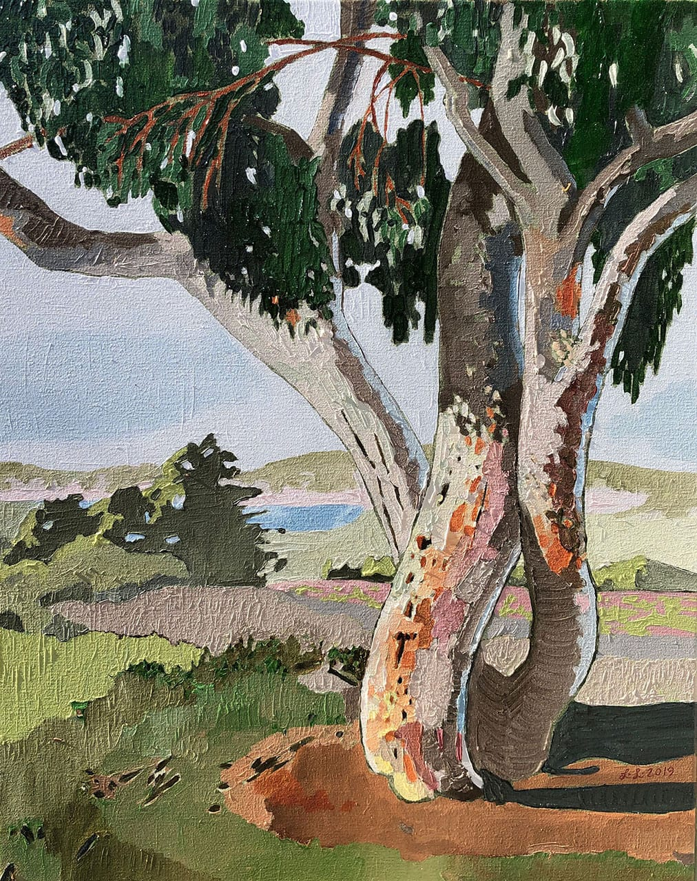 Gumtree, oil on canvas, 20x16inches