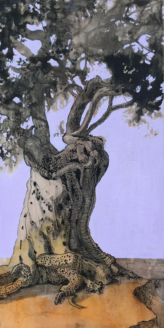 Littlewort.Olive Tree.24x12in.oil and acrylic on board.750